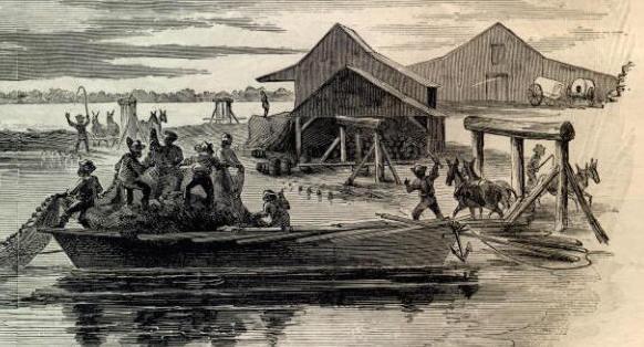 fishing-north-carolina copy